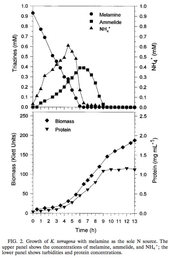 Figure2_Metabolism_of_Melamine_by_Klebsiella_terragena.png